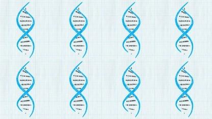 DNA-Stränge