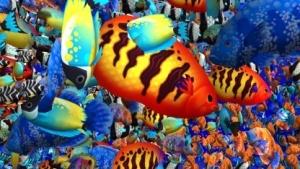 Deutlich mehr Fische pro Drawcall und Frame durch die Vulkan-Grafikschnittstelle