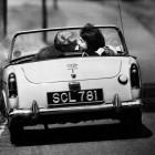 Kontrollverlust: Experte warnt vor Sex in automatisierten Autos