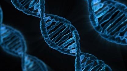 DNA-Strang: langlebig und hohe Speicherdichte