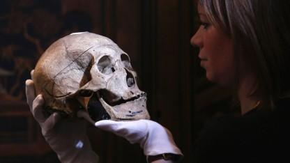 Skullconduct: reine Kopfsache