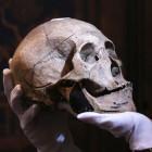 Skullconduct: Der Schädel meldet den Nutzer an der Datenbrille an