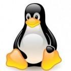 Betriebssysteme: Linux 4.8 übertaktet AMD-Grafikkarten