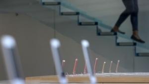 Eröffnung eines Apple Stores