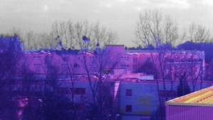 Bild der Multispektralkamera im sichtbaren und infraroten Bereich: keine Parallaxenfehler, keine chromatische Aberration