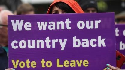 Kampagne der Austrittsbefürworter in Großbritannien