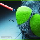 3D-Druck: Objektive in Haaresbreite