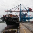 Hafen: Die Schauerleute von heute sind riesig und automatisch