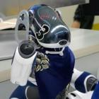 Zukunftspläne: Sony plant offenbar neuen Roboterfreund