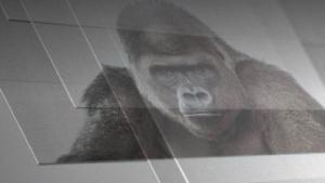 Gorilla Glas 5 ist nur 0,6 mm dick.