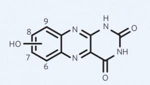 Hydroxylierte Alloxazine haben eine ähnliche Struktur wie Vitamin B2.