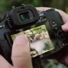 Systemkamera: Panasonic Lumix G81 soll 4K-Filmen erschwinglich machen
