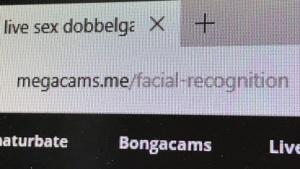 Die Webcam-Suchmaschine Megacams.me bietet eine Suche nach Doppelgängern an.