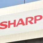 Apple: Display für kommendes iPhone könnte von Sharp kommen