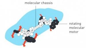 Ein molekulares Auto, das von den Nobelpreisträgern konstruiert wurde.