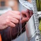 Netzausrüster: Zahl der Glasfaserkunden der Telekom per Mausklick verfügbar