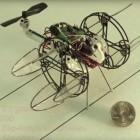 Drohne: Cyclocopter im Miniformat fliegt