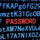 IT-Sicherheit: Facebook kauft Passwörter im Darknet
