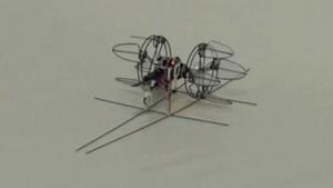 Cyclcopter: Rad mit vier rotierenden Blättern