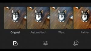 Die Google-Fotos-App unter Android