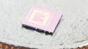 Erste Prototypen der Open-V-Chips stehen schon bereit.