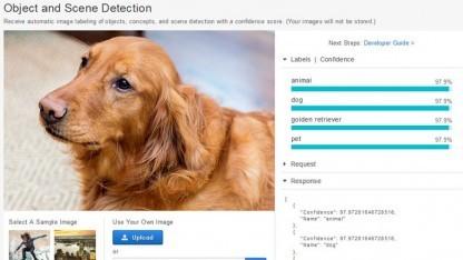 Die Amazon-Cloud kann genutzt werden, um Bildinhalte zu erkennen.