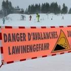 Avalanche-Botnetz: Weltweites Cybercrime-Netzwerk zerschlagen