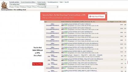Die Suche bei The Pirate Bay