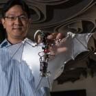 Bat Bot: Die Fledermaus wird zum Roboter