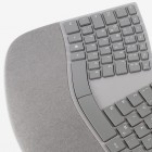 Surface Ergonomic Keyboard: Microsofts Neuauflage der Mantarochen-Tastatur