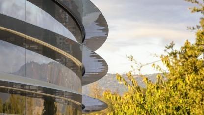 Apple Park: 465.000 Quadratmeter Asphalt und Beton durch Grünflächen ersetzt
