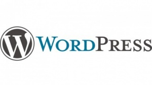 Dank automatischer Updates ist Wordpress eines der sichersten Content-Management-Systeme.