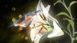 Die Drohne als Biene: Die Bienenbestände schwinden.