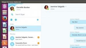 Die Zukunft von Skype für Linux ist das Web.