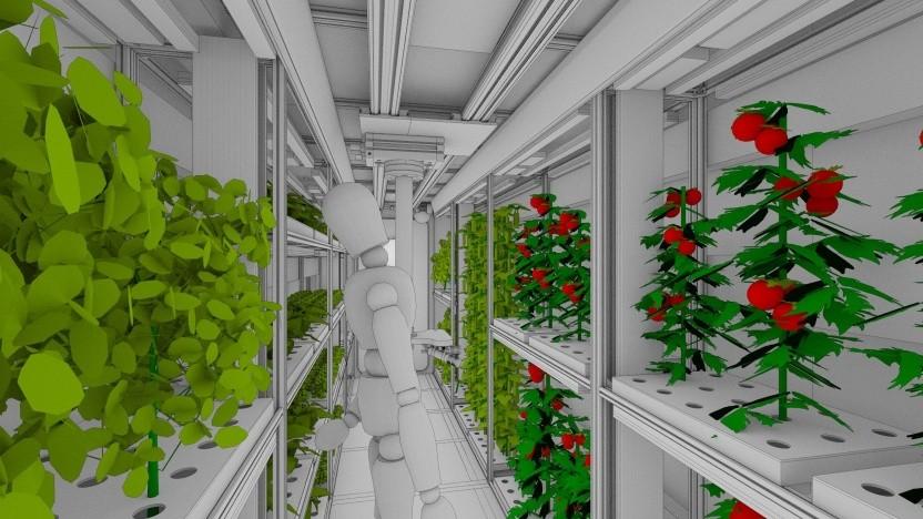 Gewächshaus Eden: Die Erdbeere ist eine Diva.