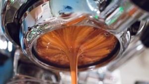 Zum Aufbau von Googles Espresso haben die Entwickler bestimmt sehr viel Kaffee benötigt.