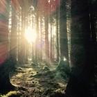 Deutsche Telekom: FTTH in der Berghütte kostet über eine Million Euro