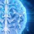 Gesundheit: ARM entwickelt ins Gehirn zu implantierende Chips