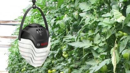 Plantect: Daten für das Pflanzenwachstum