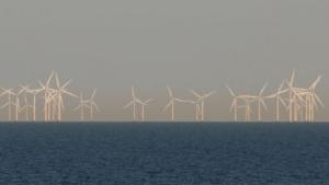 Offshore-Windpark in der Ostsee (Symbolbild): Das erste von drei Kabeln ist fertiggestellt.