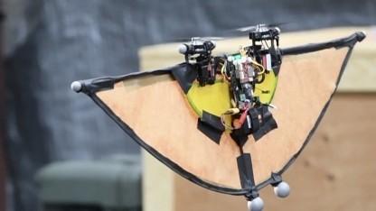 Die Flughörnchen-Drohne soll Feinde ausspionieren.