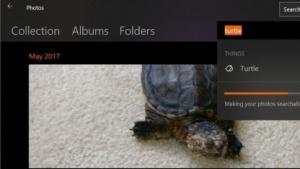 Die neue Photos App zeigt Bilder nach Motiven an.