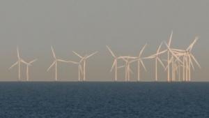 Offshore-Windpark in Dänemark (Symbolbild): Windstrom und Frühstücksspeck