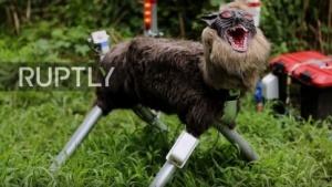 Roboter im Wolfspelz: heult, spricht, imitiert Schüsse