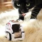 Anki Cozmo im Test: Katze gegen Roboter