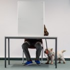 Bundestagswahl 2017: Union und SPD verlieren, Jamaika-Koalition rückt näher