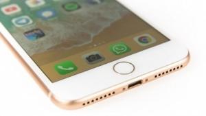iPhone 8 Plus: Akkus von Samsung SDI und ATL