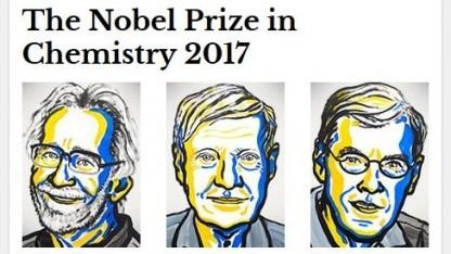 """Nobelpreisträger in Chemie 2017: """"Ein Bild ist der Schlüssel zum Verständnis""""."""