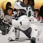 Roboter: Sony lässt Aibo als Alexa-Konkurrenten wieder auferstehen