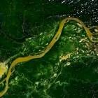 Streit um .amazon: Amazonas-Staaten wollen sich Amazon nicht beugen